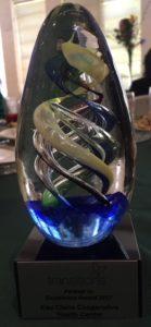 ECCHC Transitions Award